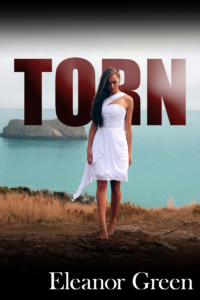 TORN cover1